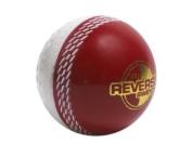 grey-NICOLLS Reverse Swing Cricket Ball