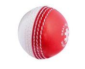 grey-NICOLLS Wonderball Swing Cricket Ball