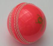 Readers Supaball Practise Cricket Ball