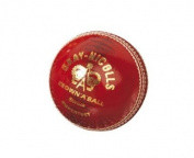 grey-NICOLLS Supertest Leather Cricket Ball