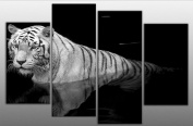 Large Tiger Canvas Picture Black and White 4 panels multi panel split completely ready to hang, hanging template included for easy hanging, UK company 100cm width 70cm height
