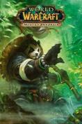 World of Warcraft (Pandaria) - Maxi Poster - 61cm x 91.5cm