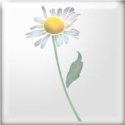 The Stencil Studio Chrysanthemum Daisy Flower Reusable Stencil - A5 Size