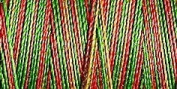 Gutermann Sulky Variegated Cotton (for Machine Embroidery) No 30 300m - 4107