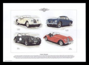 Morgan Classic Sports Cars - 4/4 S1 S2 S3 S4 S5, Plus 4 Plus, Plus 8 - Art Print