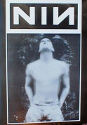 Nine Inch Nails (Trent Reznor Blur) Music Poster Print - 60cm X 90cm