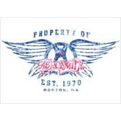 Aerosmith Band Postcard
