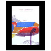 ANDREW BIRD - New York 2009 - 35.6x25.4cm