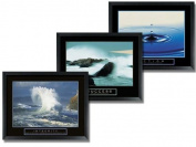 Wallsthatspeak 3 Framed Water Ocean Wave Motivational Posters Success Action Integrity