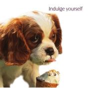 Indulge Yourself Cavalier King Charles Spaniel Birthday Card