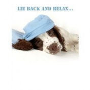 Cute English Springer Spaniel Dog in blue hat 'Relax' Birthday card