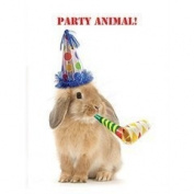 Party Animal! Cute Bunny Rabbit in party hat Birthday card