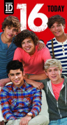 One Direction Birthday Card - Age 16/16th Birthday Card