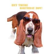 Basset Hound in Glasses Humour Birthday Card