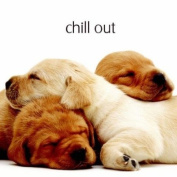 Chill Out Yellow Labrador Puppies Birthday Card