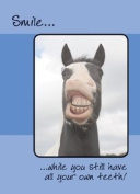 Horse, Smile Birthday Card ....While you still have all your own teeth!