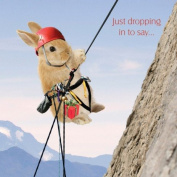 In the Swing Rabbit Abseiling Birthday card