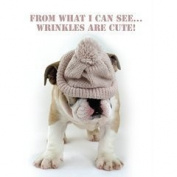 Bulldog Puppy Dog in woolly hat 'Wrinkles are cute' Birthday Card