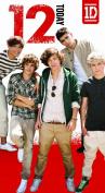 One Direction Birthday Card - Age 12/12th Birthday Card