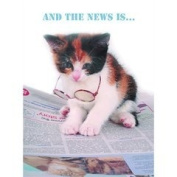 Cute Tortoiseshell and White Kitten Cat reading a newspaper 'And the news is...' Birthday Card