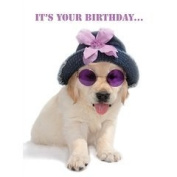 Cute Yellow Labrador Puppy Dog in hat and sunglasses Birthday Card