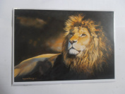 'A Wild Nobility' African Lion Sanctuary Pollyanna Pickering blank greetings card