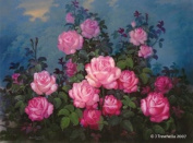 Floral - Rose Art Greeting Card - Blank - Pink Roses