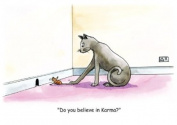 Cat Karma - Humorous & Fun, Spiritual Blank Greeting Cards. Meditation, Reiki, Healing, Chakras, Karma,