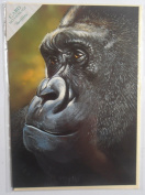 'Rainforest Dreaming' Gorilla Sanctuary Pollyanna Pickering blank greetings card