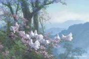 Bird Art Greeting Card - Blank - White Fantail Pigeons