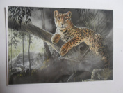 'Temple of the Jaguar King' Jaguar Sanctuary Pollyanna Pickering blank greetings card
