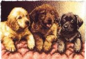 "Wonderart Latch Hook Kit 60cm X34""-Lab Puppies"