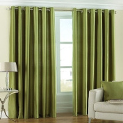 Fiji Faux Silk Eyelet Lined Curtains, Green, 230cm x 230cm