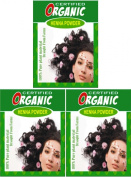 (Qty. 3) 100g Certified Organic Henna Powder for Hair Colour Conditioning. Golden Brown Colour.