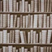 Sepia - F92307 - 3D Effect Bookcase Bookshelf Library - Sculptured Vinyl Wallpaper
