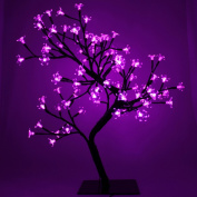 0.6m (60cm) Pre-Lit Pink 96 LED Illuminated Cherry Blossom Tree with Brown Trunk & Branches
