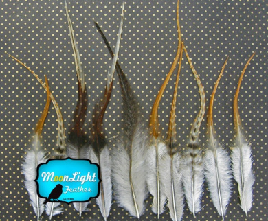 Hair Feathers ; 1 Dozen - SHORT UNIQUE GINGER Grizzly Rooster Feathers