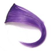 Pure Colour Two Clip Hair Bang Piece