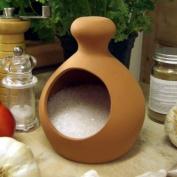 Terracotta Salt Piglet
