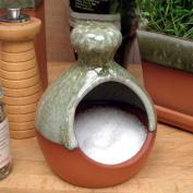 Terracotta Salt Piglet - Apple Glaze