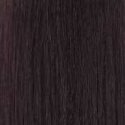 Euronext Premium Remy 36cm Clip-In Human Hair Extensions Black