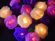 Battery Powered Mixed Purple Colour Rose Fairy Light String