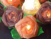 Battery Powered Old English Browns Mixed Colour Rose Fairy Light String