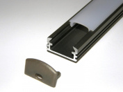 Aluminium Profile for LED Strips / LED Tapes; Anodized INOX Base, CLEAR Cover, Set with Two End Caps; 1m long