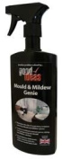 Good Ideas Mould & Mildew Remover (913)-Bathroom, Kitchen Cleaner. Removes mould instantly for upto 6 months.