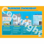 Business Ownership Wall Chart/Poster in High Gloss Paper