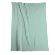 Biederlack Bocasa Thermosoft Microfibre Blanket Throw, 150 x 200 cm, Mint