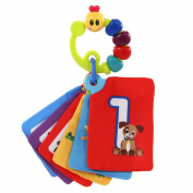 Baby Einstein Shapes and Numbers Discovery Cards