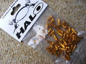 Halo Alloy Spoke Nipples (Bag of 50) Gold