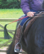 Moorland rider Fly Whisk / Riding Whip